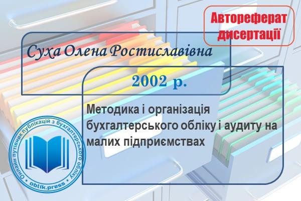 Організація бухгалтерського обліку і аудиту на малих підприємствах